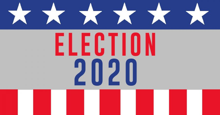 Understanding the Defining Issues of the 2020 Election